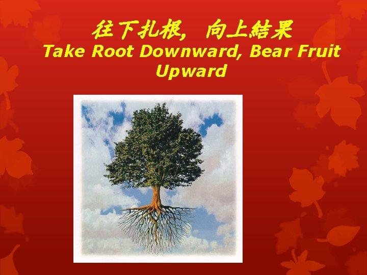 往下扎根, 向上結果 Take Root Downward, Bear Fruit Upward