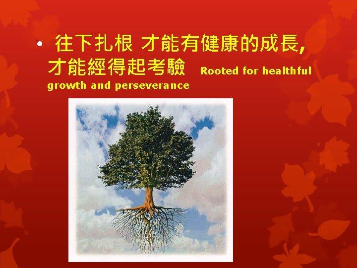 • 往下扎根 才能有健康的成長, 才能經得起考驗 Rooted for healthful growth and perseverance