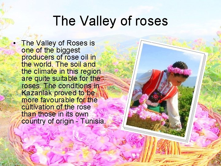 The Valley of roses • The Valley of Roses is one of the biggest