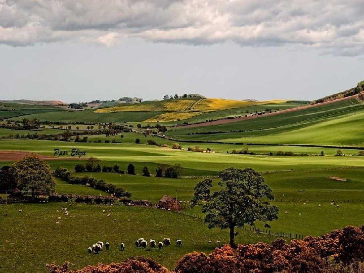 Apenas se entra a las Highlands el paisaje va cambiando a medida vamos subiendo