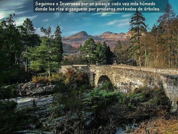Seguimos a Inverness por un paisaje cada vez más húmedo donde los ríos zigzaguean