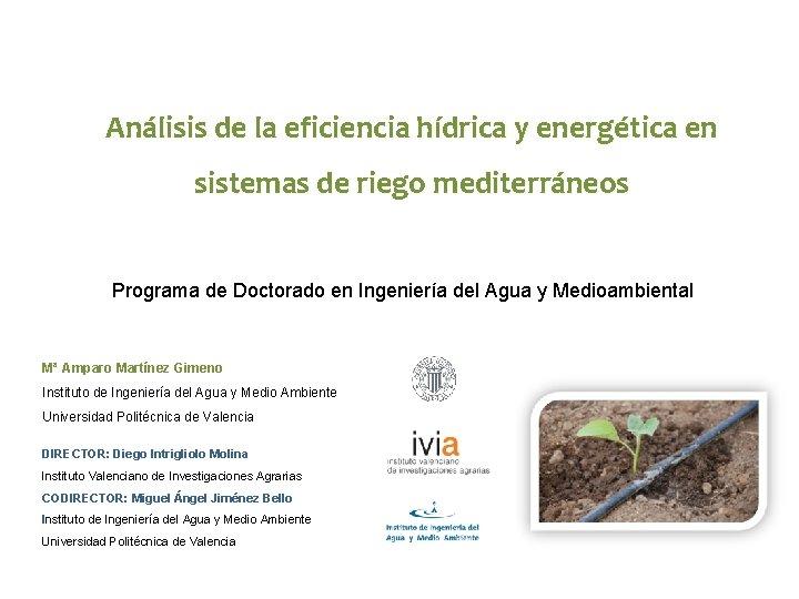 Análisis de la eficiencia hídrica y energética en sistemas de riego mediterráneos Programa de