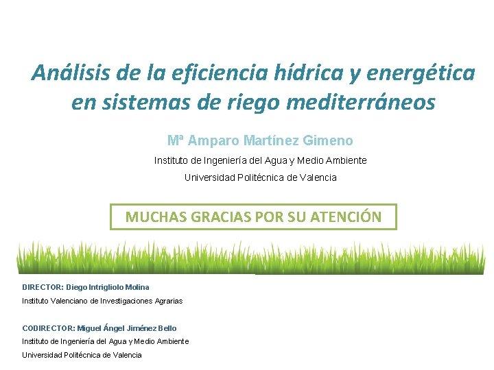 Análisis de la eficiencia hídrica y energética en sistemas de riego mediterráneos Mª Amparo
