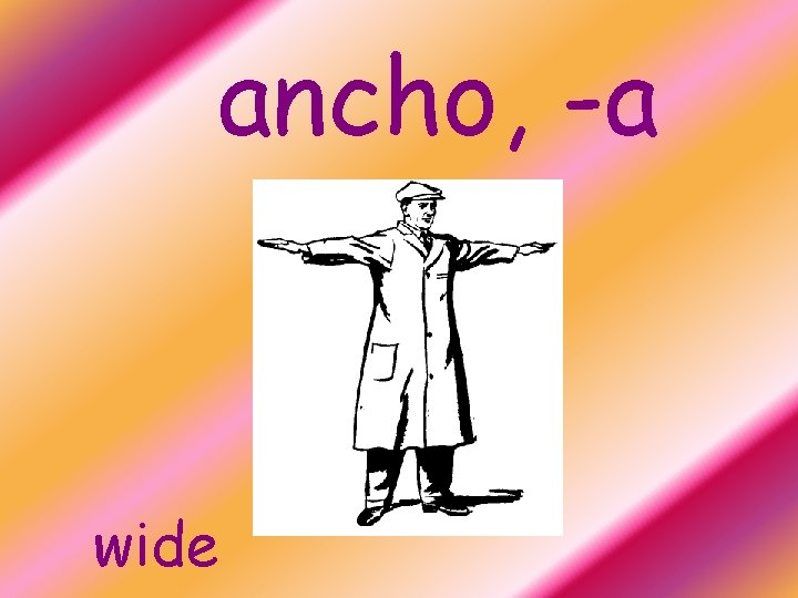 ancho, -a wide