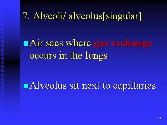 7. Alveoli/ alveolus[singular] n Air sacs where gas exchange occurs in the lungs n