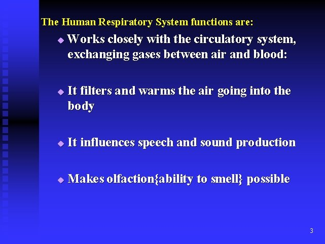 The Human Respiratory System functions are: u u Works closely with the circulatory system,