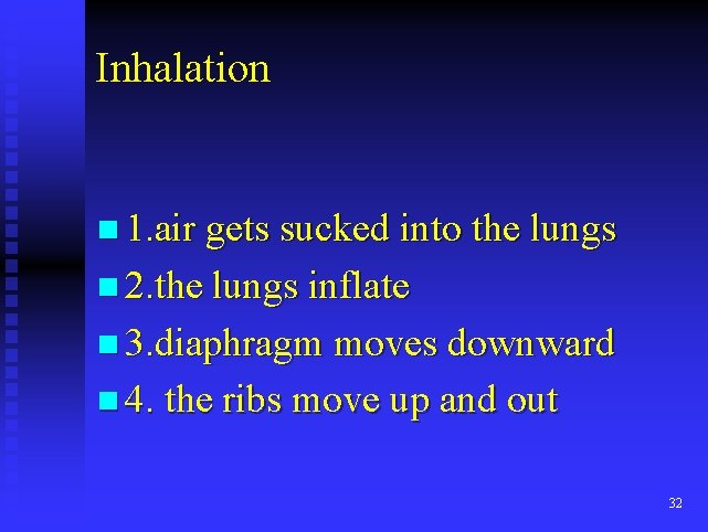 Inhalation n 1. air gets sucked into the lungs n 2. the lungs inflate