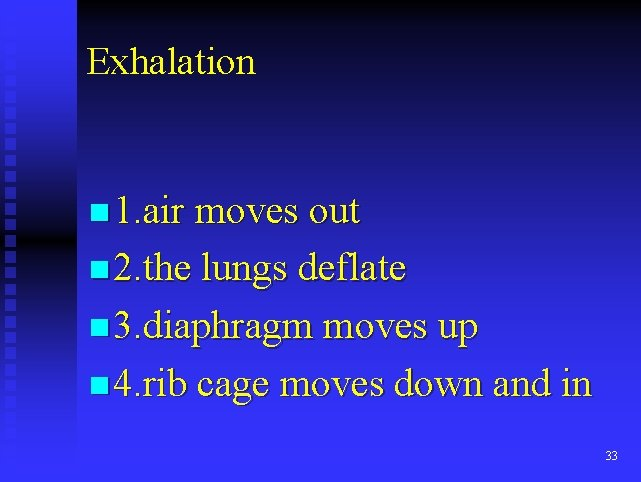 Exhalation n 1. air moves out n 2. the lungs deflate n 3. diaphragm