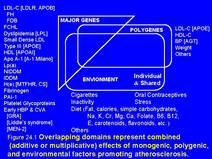 LDL-C [LDLR, APOB] FH MAJOR GENES FDB FCHL LDL-C [APOE] POLYGENES Dyslipidemia [LPL] HDL-C