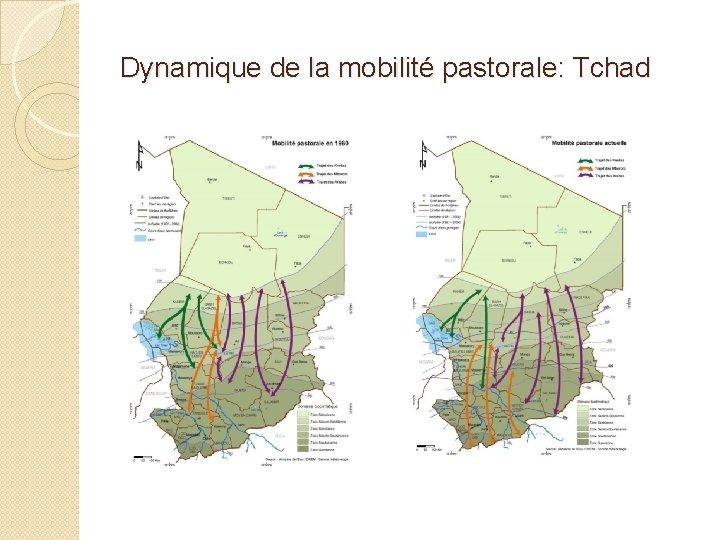 Dynamique de la mobilité pastorale: Tchad