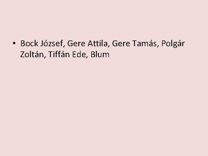 • Bock József, Gere Attila, Gere Tamás, Polgár Zoltán, Tiffán Ede, Blum