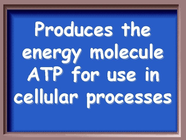 Produces the energy molecule ATP for use in cellular processes