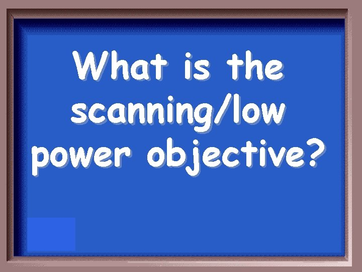 What is the scanning/low power objective?