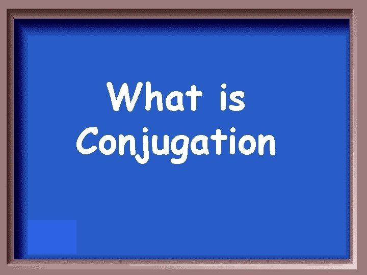 What is Conjugation