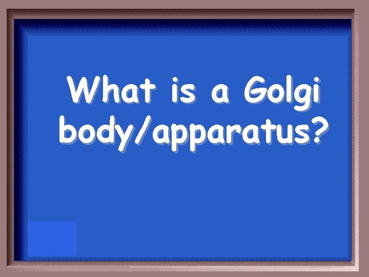 What is a Golgi body/apparatus?