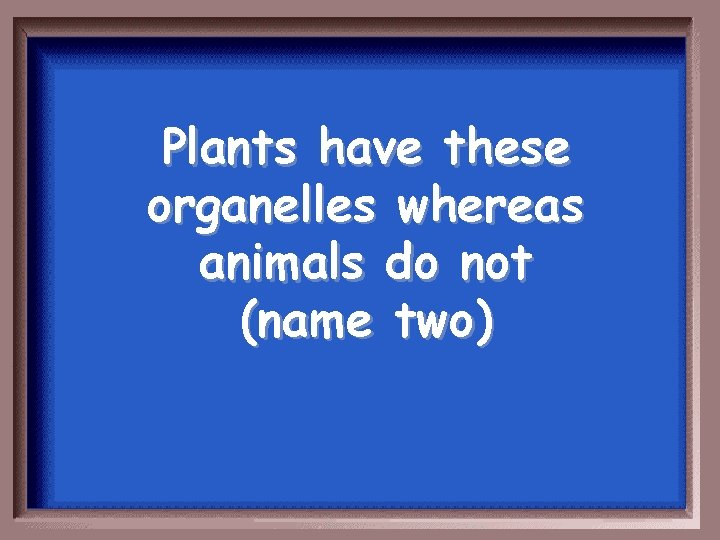 Plants have these organelles whereas animals do not (name two)
