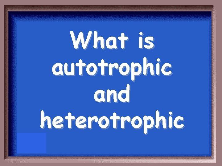 What is autotrophic and heterotrophic