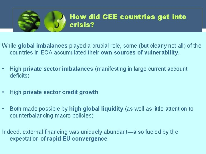 How did CEE countries get into crisis? While global imbalances played a crucial role,
