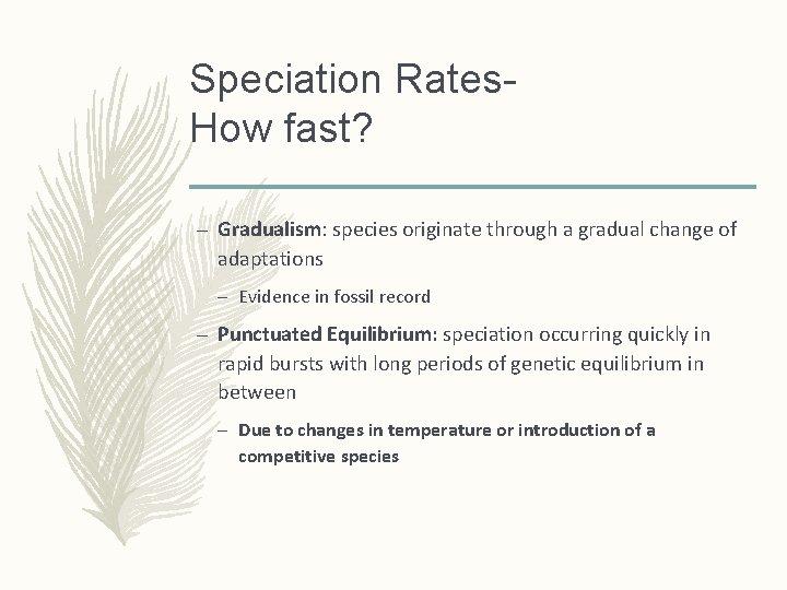 Speciation Rates. How fast? – Gradualism: species originate through a gradual change of adaptations