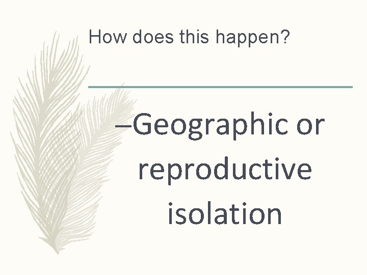 How does this happen? –Geographic or reproductive isolation