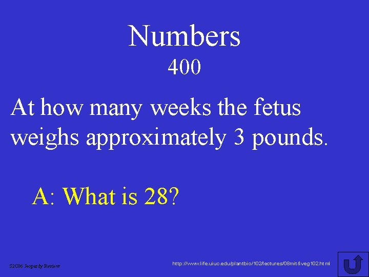 Numbers 400 At how many weeks the fetus weighs approximately 3 pounds. A: What