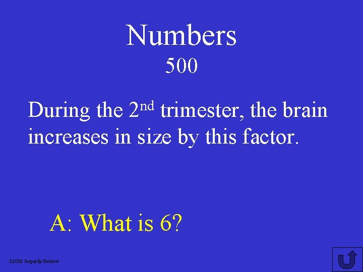 Numbers 500 nd 2 During the trimester, the brain increases in size by this