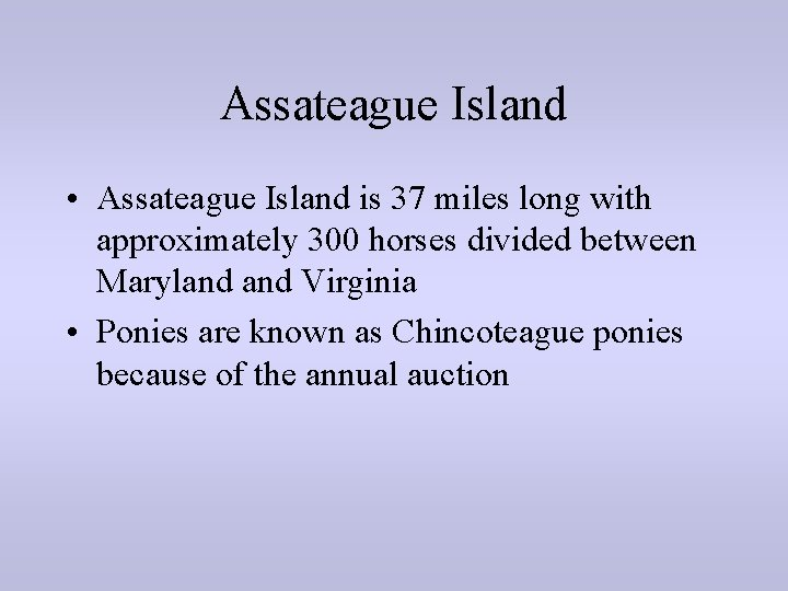 Assateague Island • Assateague Island is 37 miles long with approximately 300 horses divided