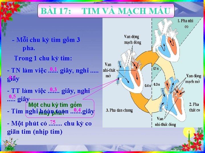 BÀI 17: TIM VÀ MẠCH MÁU - Mỗi chu kỳ tim gồm 3 pha.