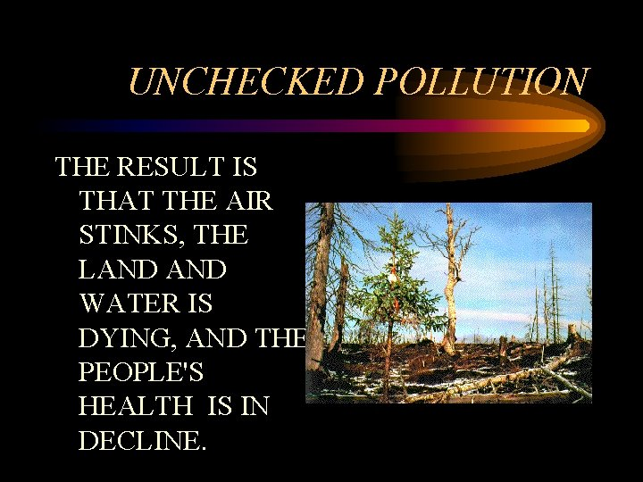 UNCHECKED POLLUTION THE RESULT IS THAT THE AIR STINKS, THE LAND WATER IS DYING,