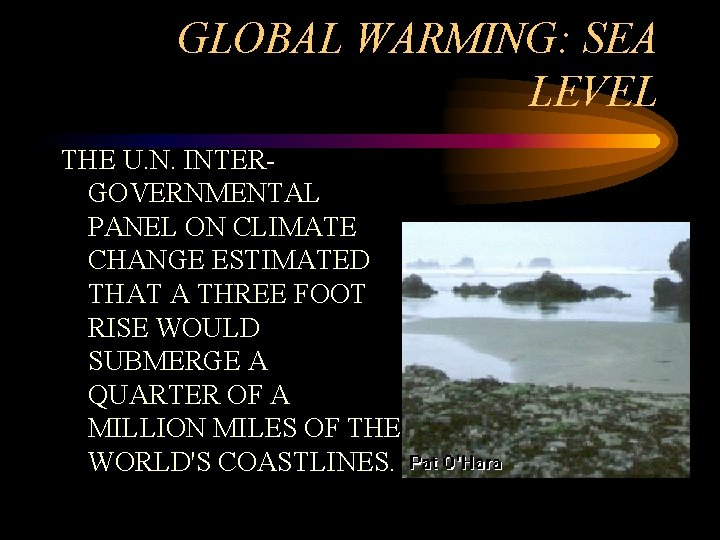 GLOBAL WARMING: SEA LEVEL THE U. N. INTERGOVERNMENTAL PANEL ON CLIMATE CHANGE ESTIMATED THAT