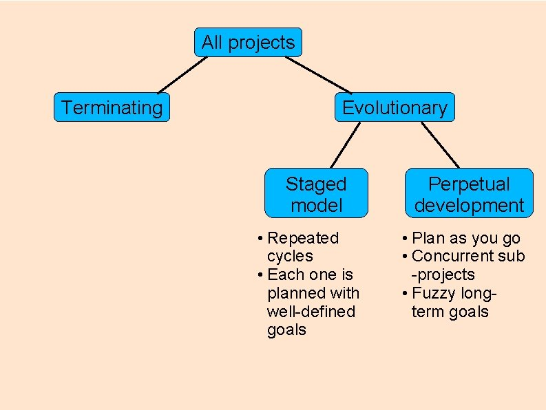 All projects Terminating Evolutionary Staged model • Repeated cycles • Each one is planned