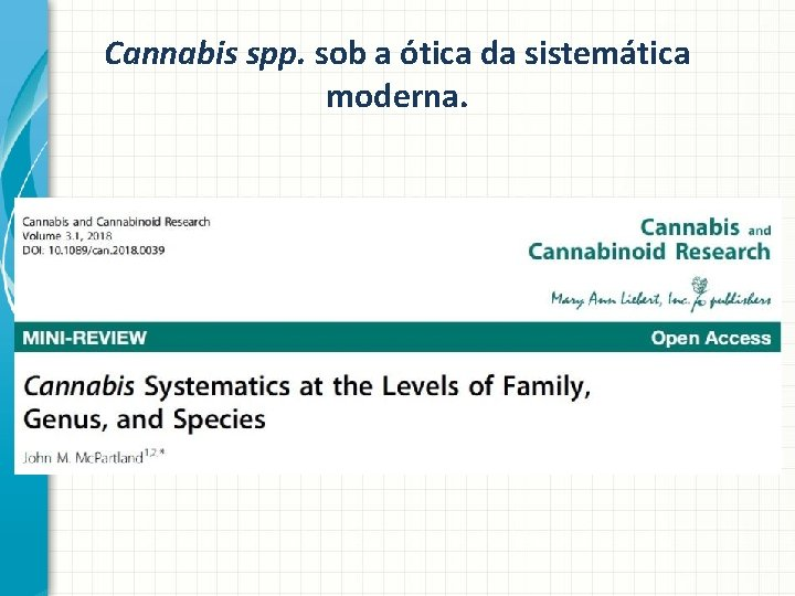 Cannabis spp. sob a ótica da sistemática moderna.