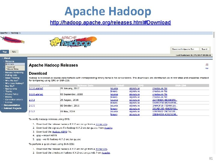 Apache Hadoop http: //hadoop. apache. org/releases. html#Download 81