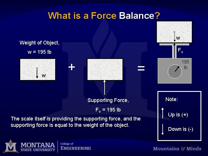 What is a Force Balance? w Weight of Object, Fe w = 195 lb
