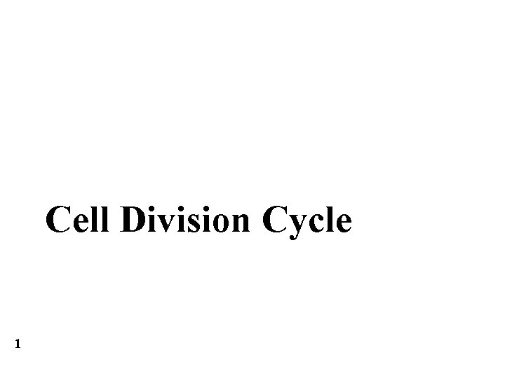 Cell Division Cycle 1