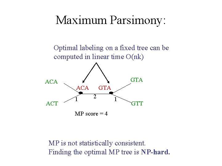 Maximum Parsimony: Optimal labeling on a fixed tree can be computed in linear time