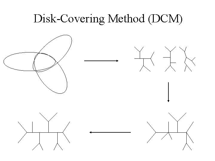 Disk-Covering Method (DCM)