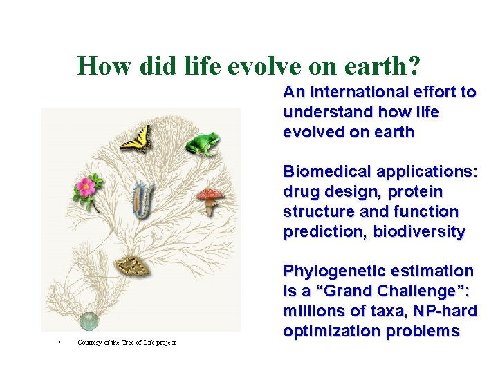 How did life evolve on earth? An international effort to understand how life evolved