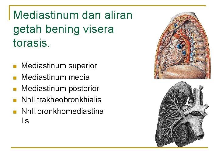 Mediastinum dan aliran getah bening visera torasis. n n n Mediastinum superior Mediastinum media
