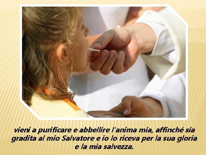 vieni a purificare e abbellire l'anima mia, affinché sia gradita al mio Salvatore e