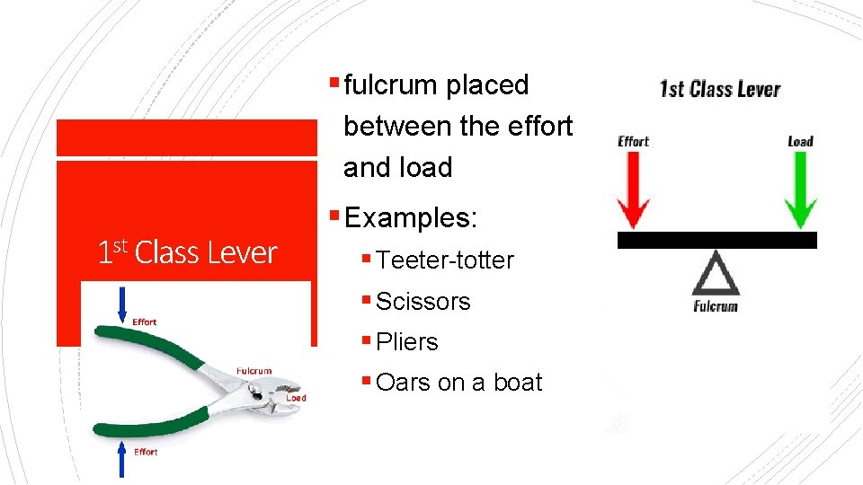 § fulcrum placed between the effort and load 1 st Class Lever § Examples: