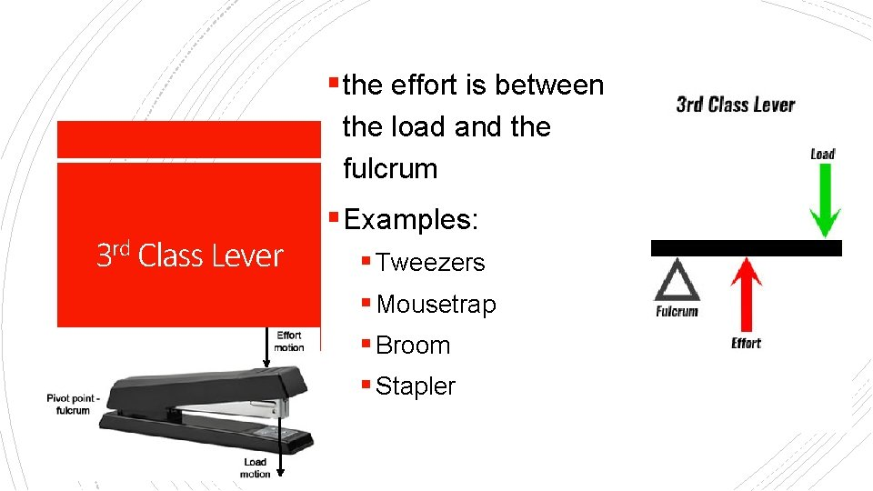 § the effort is between the load and the fulcrum 3 rd Class Lever
