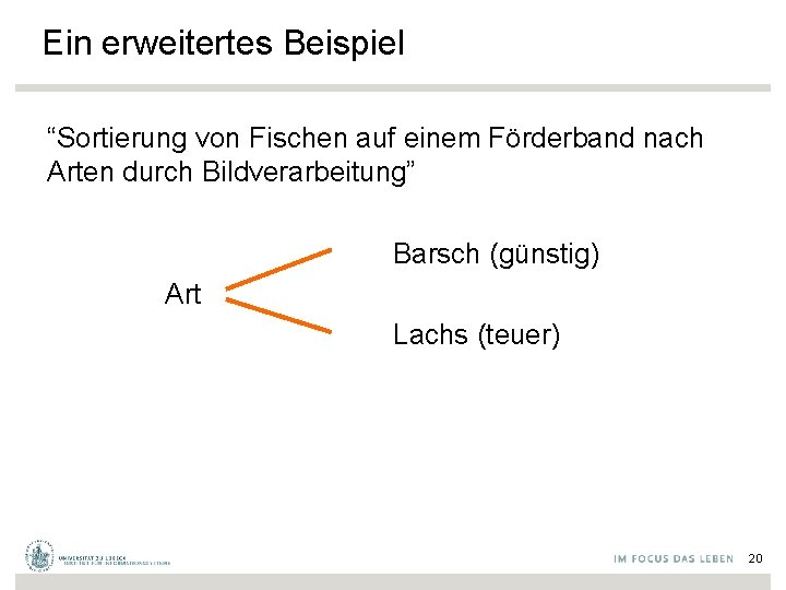 """Ein erweitertes Beispiel """"Sortierung von Fischen auf einem Förderband nach Arten durch Bildverarbeitung"""" Barsch"""