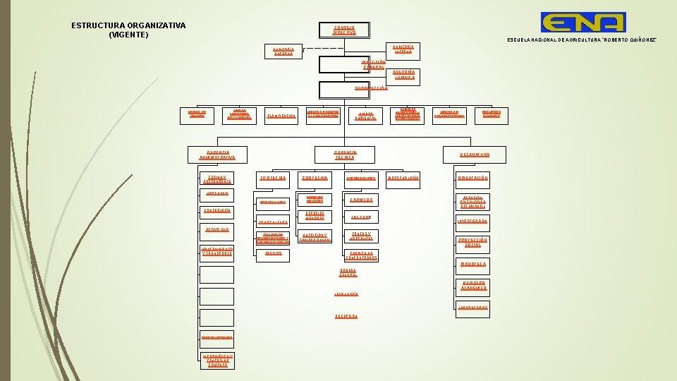 """ESTRUCTURA ORGANIZATIVA (VIGENTE) CONSEJO DIRECTIVO ESCUELA NACIONAL DE AGRICULTURA """"ROBERTO QUIÑÓNEZ"""" AUDITORÍA INTERNA AUDITORÍA"""