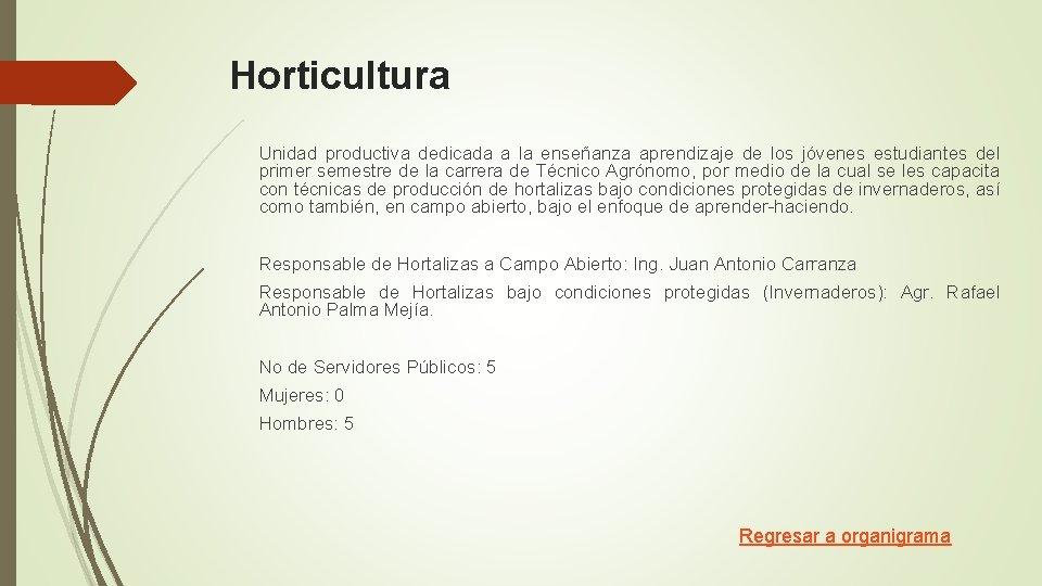 Horticultura Unidad productiva dedicada a la enseñanza aprendizaje de los jóvenes estudiantes del primer