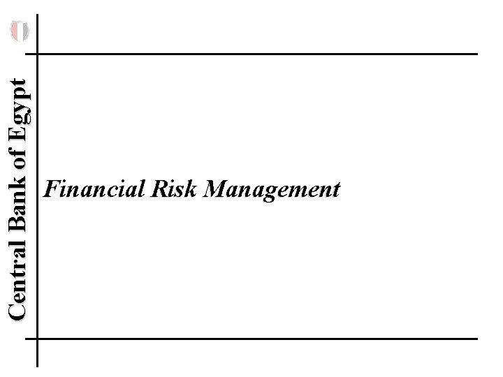 Central Bank of Egypt Financial Risk Management