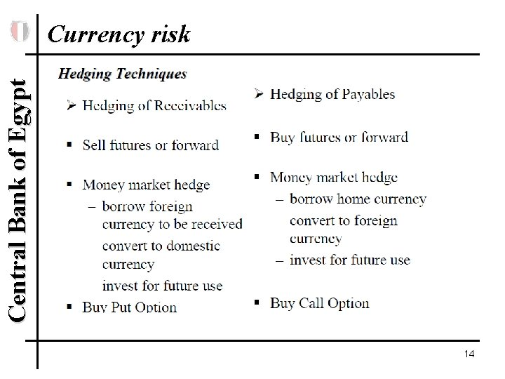 Central Bank of Egypt Currency risk 14