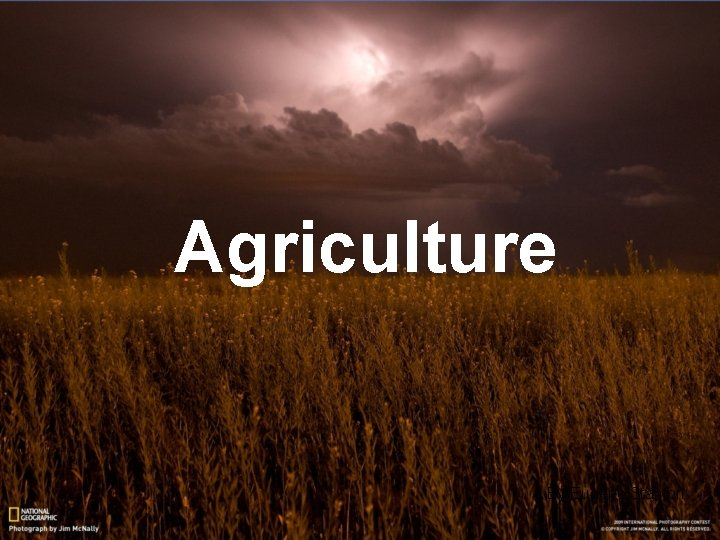 Agriculture By Eugene Stanton