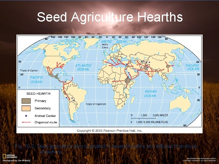 Seed Agriculture Hearths Fig. 10 -2: Seed agriculture also originated in several hearths and