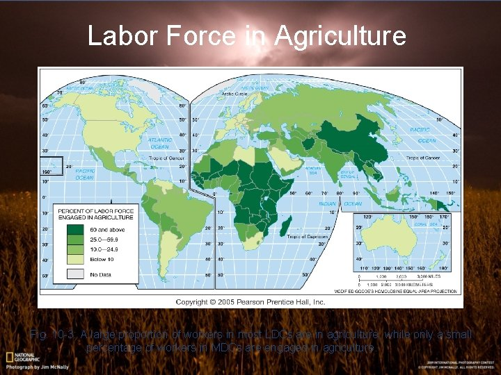 Labor Force in Agriculture Fig. 10 -3: A large proportion of workers in most